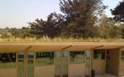 living-roof-1